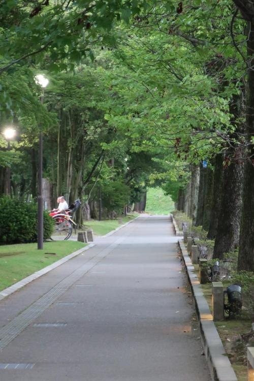 街中へ歩いて行きます。本当に金沢は緑が多く気持ちがいいです。<br />人力車が通り過ぎて行きました。シャッターチャンス遅し。
