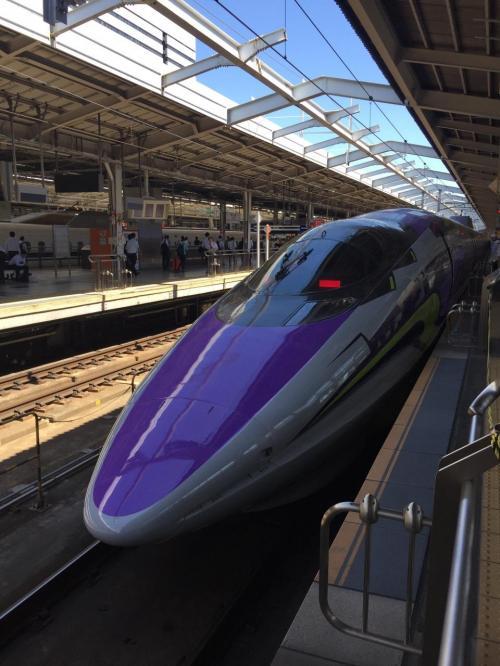 姫路から新大阪まで新幹線で行きます。いつも快速電車なので子供のように嬉しいのです。<br />来たのはかって見たことのない外装のこだま号。格好いいです。降車時写真をと前へ行ったら沢山の人が同じように写真を撮っていました。<br />その時知りました。特別記念列車エヴァリオン号だったのです。ラッキー
