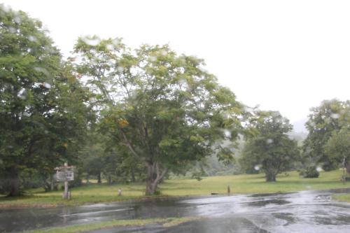 10時前に新青森でレンタカーを借りて八甲田方面に向かいましたが、萱野高原で雨が降ってきました。<br />