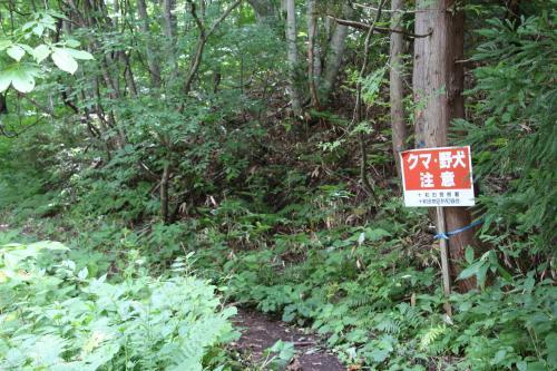遊歩道を歩いている人もなく、クマが怖いので、<br />