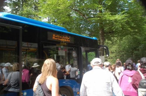 路線バスのチケットを購入し、乗車する。ものすごくたくさんの人たちが並んでいた。通ったのはかなりの山道で、運転も荒かった。帰りは下りなので、帰りのバスのチケットを購入しない人もいるらしいが、私たちは往復券を購入しておいた。それで正解だったと、通って来た山道を見て思った。