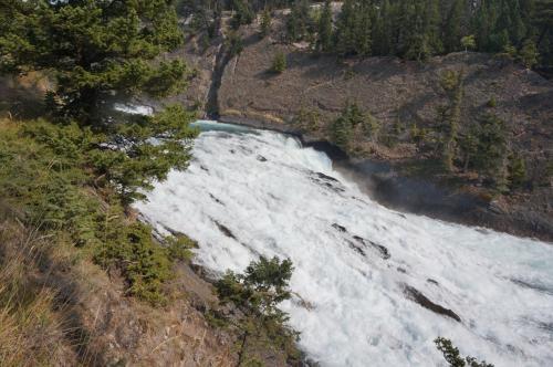 馬の通り道(馬の糞だらけ)の小路を通ってボウ川沿いのトレイルにたどり着いた。<br />下からボウ滝を見たらビューポイントだったのかもしれないけれど、かなり下って戻るようだったので、ボウ滝の横でランチしながら眺めることになった。
