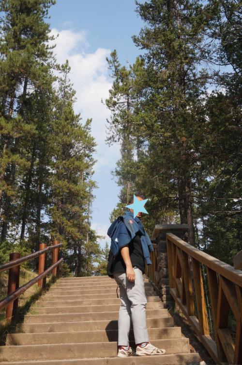ボウトレイルを歩いてカスケード・ガーデンズまで行くことに。<br />道が整っているのでとても歩きやすい。<br />身構えずにトレッキングが出来る。<br />疲れたら休める椅子もある。<br />楽しみながら歩ける道です。
