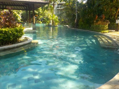 午前中はプールでゆっくり。