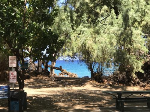 四日目にして初めてシュノーケリング。#69beach(旧ワイアレアビーチ)、お隣にHapuna Beachって言う有名なビーチがあるんですが、ホントここは穴場でした。