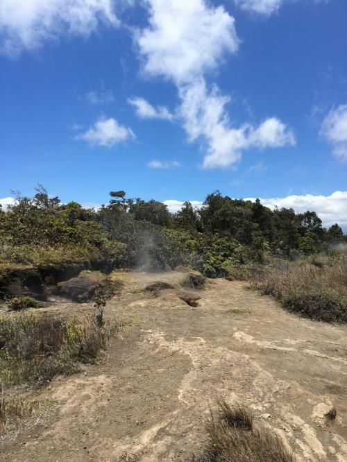 地面から蒸気が出ていて暖かい。<br />(というか熱い?!)<br /><br />地面から蒸気と言えばイエローストーン。<br />ハワイ島との違いはバイソンが周りにいるかいないかか?!<br />