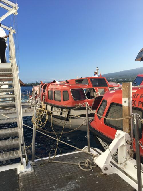 夜のうちにヒロからコナへ船は移動し、この日はコナ。<br />コナは港が浅く、大型船が入れないので、<br />沖からテンダーボートに乗って上陸。
