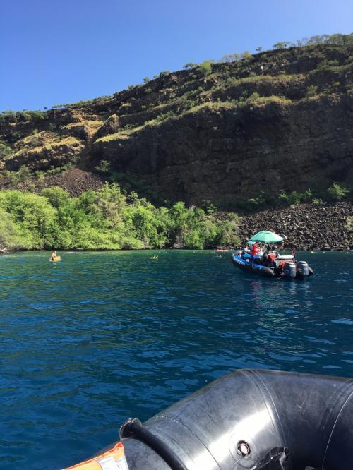 Zodiacボートでのツアーへ。<br /><br />このボートがまぁぶっ飛ばすぶっ飛ばす。<br />調子こいて一番前に乗ったら風切って気持ち良かった!<br />けれど、めちゃ踏ん張って翌日超筋肉痛に。笑