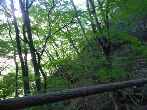 浮島から詩のこみちへ。<br />処々に置いてある熊よけの鐘をならしながら、<br />吹割渓谷散策でーす!