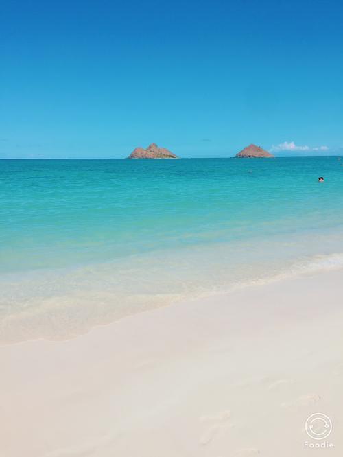 ワイキキとは違って、穏やかなビーチ。<br /><br />水着を着てこなかったことを後悔しました(´;ω;`)<br /><br />次は絶対水着持って来るぞ!