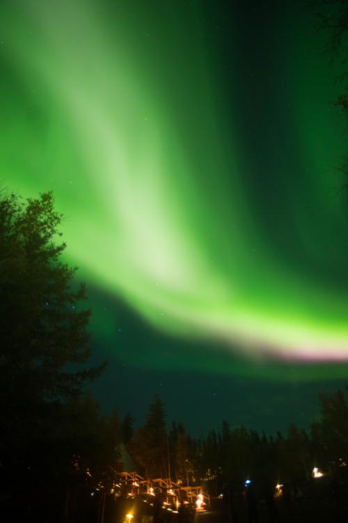 そして光が集まっていったかと思ったら、そのまま大爆発!!!<br />肉眼でもまばゆいくらいの緑やピンクや赤っぽい光が真上から降り注ぐような光景でした。<br />2枚前の写真のような感じで、でももっと激しい光線のようなカラフルな光でした。<br />これぞまさしくブレイクアップ!!<br />オーロラビレッジのスタッフさんも、これくらいのものは頻繁には見られないと言っていました。<br /><br />・・・<br />カメラはその90度くらい右を向いてたんですけど(笑)<br />でも、これがちょうどその瞬間くらいの写真ですね。<br />その中心地でなくともこれだけの強い光が出ていました。<br /><br />写真には写せなかったんですけど、あの光景は忘れられそうにありません。<br />本当にすごい光景でした!<br />その場にいた人たち全員が歓声を上げたくらい。<br />本当にここに来てよかった!!と思った瞬間でした。