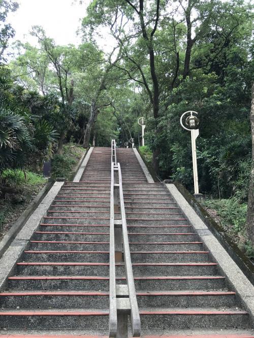 という事なので、山頂にある三角点を見るため山を登ります<br /><br />この階段が長い長い<br /><br />登っても登っても階段が続きます<br /><br />途中でやめたくなったけど、意地で登りました<br />
