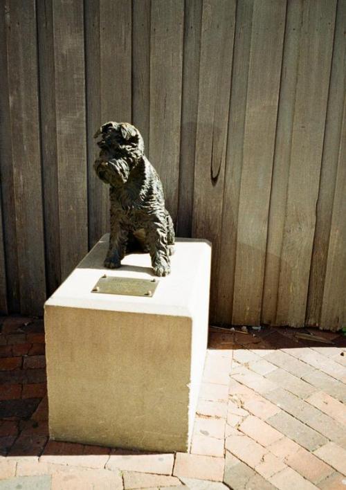 ロックス地区の人気者ワンコ「ビッグルス」の像。<br />1994年に不慮の事故で亡くなったらしい。