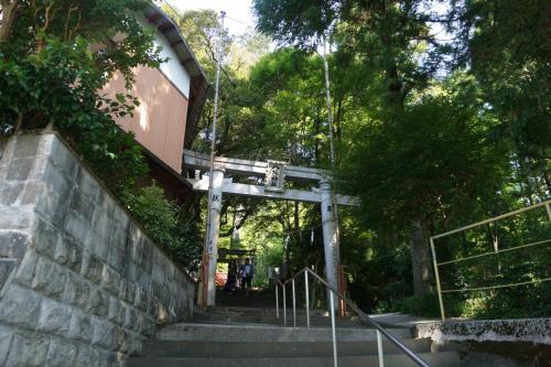 ところで、杉の大杉は、高知では知らない人はいない美空ひばりゆかりの地。