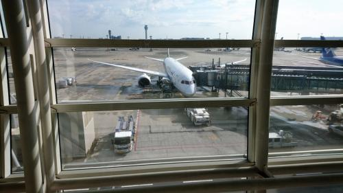 特典航空券は今回は5月ごろだけど取れました。<br /><br /><br />さて機体は、ボーイング787-8 (788)。<br /><br />ANA式に言うと、B8(ビーハチ)。<br /><br />・・と大好きなブログで解説を読んだりしたことがあります。<br /><br />ちなみにJAL式では、ナナハチというらしいです。
