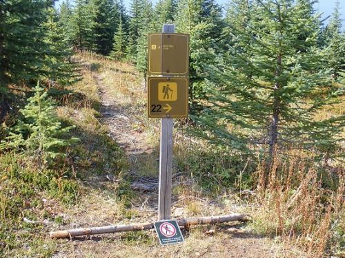 更に、登り のぼり 登る!!!<br />1時間くらいかな???<br />分岐点ですが、ループの案内しかなく<br />展望地への矢印はありません。。。<br />要注意です。  知らない人は、そのまま進んでしまいます。