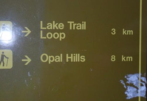 天気予報は、まずまずでした。。。。<br />ジャスパーのホテルを出発して、近くのパン屋さんで ランチを調達。。。<br />1時間ほど車で走って、マリーンレイク駐車場に着く。。。<br />   目指すは Opal Hills