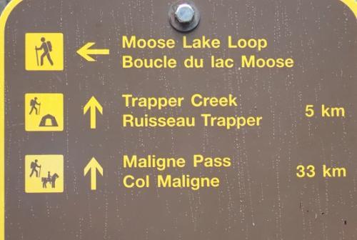 次なるミッションは、ムースを探せ!!!