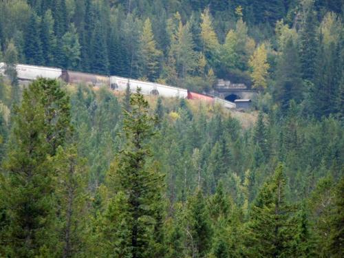 タカカウ滝を目指していたら、アッパー・スパイラル・トンネル展望台があった。ここで、10分ほど待っていたら、列車が現れた。<br />