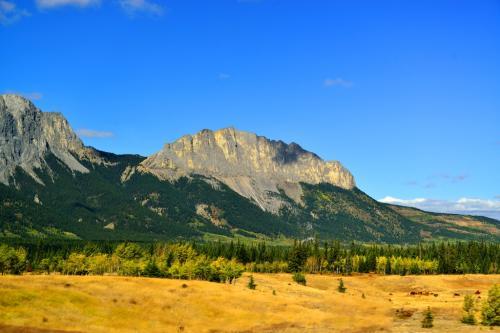 カナディアンロッキーの東の玄関口 ヤムナスカ山です。<br />これから先には山はないよ、というヤムナスカ。<br />恐竜の背中のようです。