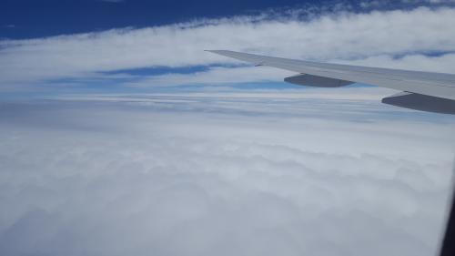 雲の上まで来ました!