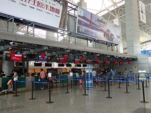 久々の中国国内一人旅です。去年の夏以来かな?<br />今回は雲南省の奥地まで行くので、前回よりも難易度が高そうです....。
