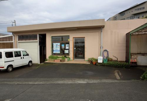 青ヶ島のお店はこの「十一屋」1軒しかありません。