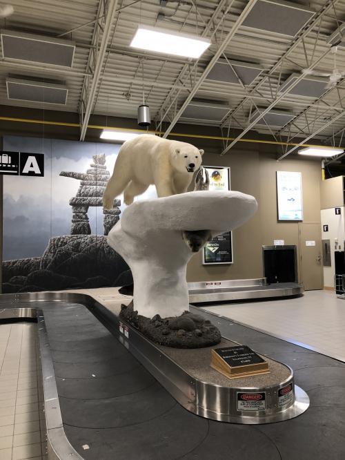 イエローナイフに到着するとやはりこのシロクマがお出迎え。<br />今回は、ナヌックオーロラツアーズさんに申し込んでおいたので空港までお迎えに来て頂きました。
