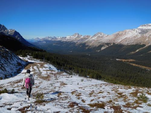 こちらも標高2000m以上から歩き始めるので、楽々ハイキングでした。