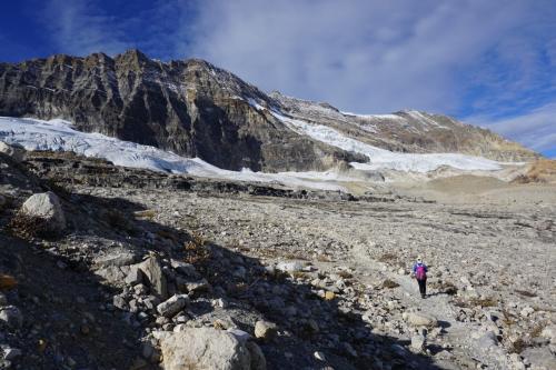 10月4日<br />今日はヨーホー国立公園内のアイスライントレイルをハイキング。<br />きょうもいい天気です。<br />その名のとおり、いくつかの氷河に沿って歩くコースです。