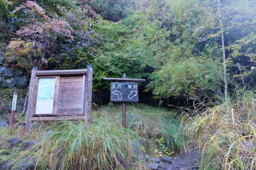 南沢から行者小屋を目指します。