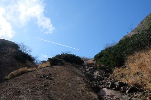 凄い急なガレ場、戻りたくないので稜線まで突っ走ります!