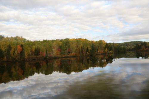 湖畔の木もちょっと紅葉しています。