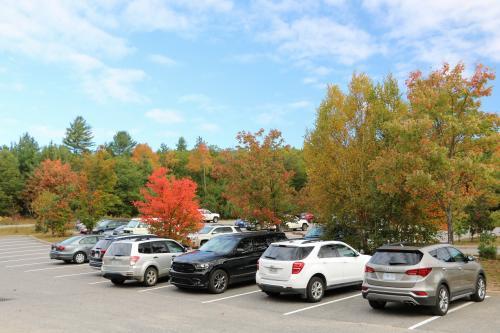 ホテルから約2時間かかってやっとアルゴンキン州立公園のビジターセンターに到着。<br />駐車場の木が真っ赤に紅葉してきれいです。