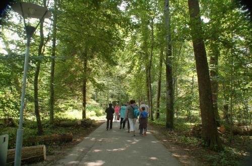 遠い、遠い。しかし、改めて写真で見ると、自然に囲まれた美しい場所を歩いていたのだとわかる。