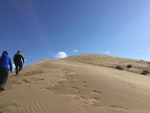 さて砂丘に登ろう。<br />ここも前日の雨で砂が湿っており、登りやすかったけど、Vさんはなぜか大変難儀していた。彼女は前日チャリン・キャニオンの日帰りツアーに参加したそうで、その際に買ったというトレッキングシューズを履いていたんだけど、それが重かったのかも。<br />確かにエッジが効いているというか、けっこう急で高さもある(150m)ので怖いんだけど。
