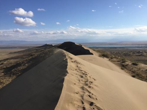 上までくると、遠くにイリ川が見える。<br />この砂丘、スィンギング・デューン(アンガンクム)と呼ばれているけど、砂が鳴るには乾燥して風が強いという条件が整わないとダメらしい。<br />そしてキャラバニスタンのサイトに「ガイドが何と言おうと、砂が鳴る現象は世界的に見て決して珍しいものではない」とか書いてあるのがおかしい(笑)。<br />車内で見せてもらったDVDにこの砂丘の鳴る音が入っていて、よく飛行機のエンジン音などと表現されているけど、まあそんな感じ...もっというと発電機が近いかな。ブーンという低い振動音で、あれを「歌う」とはまたずいぶん詩的に表現したものだと思う。<br />なおこの砂丘は、イリ川の河畔から飛んできた砂が、二つの山に挟まれたこの場所に堆積したもので、砂漠ではない。