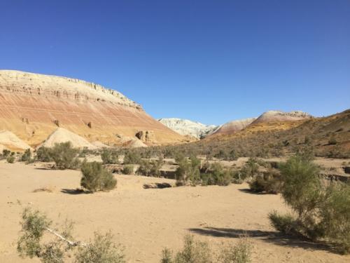 翌日は9時半頃出発して、町の小さな博物館をチラ見した後、アクタウへ。<br />本来のスケジュールだと、初日は岩絵ともう一か所を見て終わりで、2日目の午前に砂丘、午後アクタウでだったけど、一番遠い渓谷を飛ばした代わりに初日に砂丘を見たので、二日目はゆっくりアクタウ&カクタウ散策。<br />まずはアクタウへ。<br />このあたりはかなりのラフ・ロードで、しゃべっていると舌を噛む(笑)。<br />アクタウとは白い山という意味で、遠景はこんな感じ。