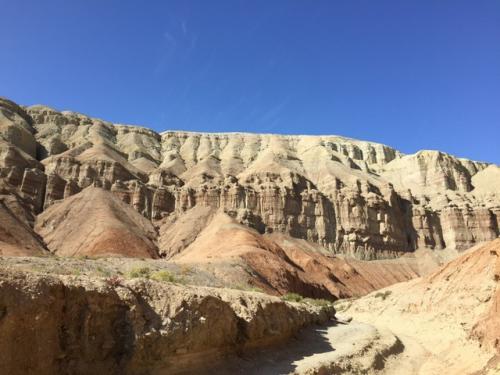 大変面白い地形。<br />あと何万年か浸食が進んだら、きっとトルコのカッパドキアみたいになるんだろうなあ。<br />他にも出窓が並んでるみたいなところとか、カーブを曲がるたびにいろんな地形が現れる。