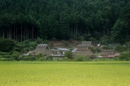 かやぶきの里 美山町北村<br /><br /> かやぶきの家の集合地帯を「ズームアップ」・・・