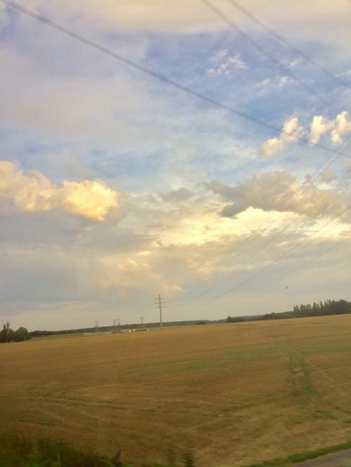 やっぱり車窓は小麦畑。