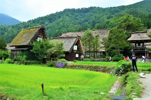 """白川郷の風景。<br />青々とした水田はこれから徐々に""""色""""を変えていきます。<br />秋が深まると稲穂は黄金色に変わり、その先の冬には一面の白銀。<br />四季折々や雪月花の言葉が示すものは、一途に美しい日本の四季。<br /><br />季節感をコンビニやスーパーから受動的に感じてしまう昨今、<br />何気ない日常から自分の感性で季節を感じ取ることができたら、<br />それは小さなことだけど、とても素敵な事だと思うのです (´ε` ) ホフー"""