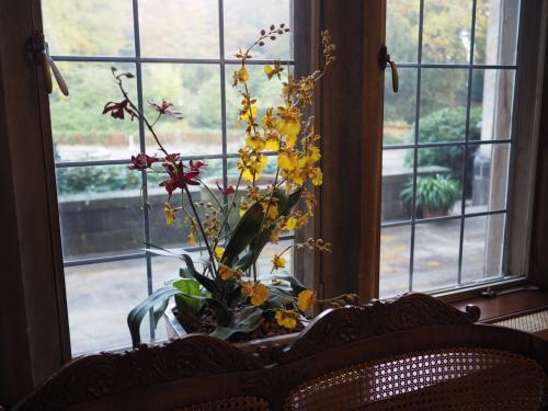 朝食を堪能したあとは、館内と庭を散策。<br />花が綺麗に活けられていた。