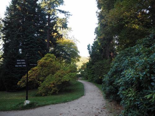 小道を歩く。<br />朝の散歩は気持ち良いものだ。