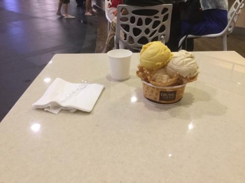 夜遅いので、駅直結のショッピングモールにて、夕ご飯がわりにアイスクリーム。<br />(それ、デザートじゃないのか?)