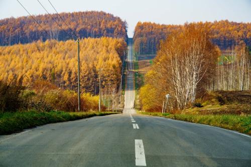 就実の丘から見るジェットコースターの道もご覧の通り<br />The ほっかいどーですね