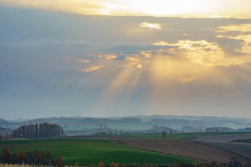 ルベに来ましたが、ここでも雲がかかってしまい、僅かに光芒が出たものの期待した朝霧には出会えません