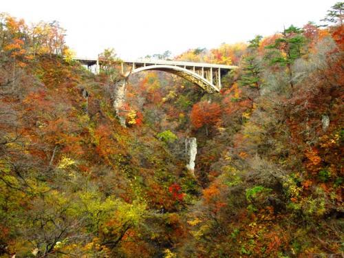 鳴子峡へ行く遊歩道からの大深沢橋です。下から見ると、やはり紅葉はかなり散っているように見えます。。