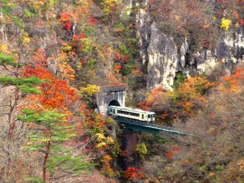 大深沢橋から鳴子峡の橋梁を通過する列車を撮影しました。ツアー客を含めてかなりの観光客で、場所をとるのに苦労しましたが、なんとかよい写真が撮れたと思います。