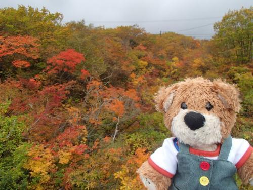 ちょっと車を停めて、紅葉を撮影。<br />このあと雨が降り出し霧に包まれることに。<br />早めに紅葉の写真を撮っておいて良かった。